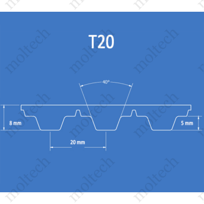 T20 bordásszíj
